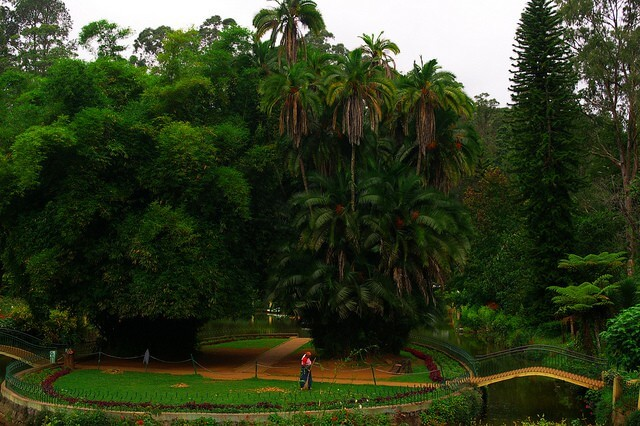 Sims Park at Coonoor, BeautifulPlacesIndia.com