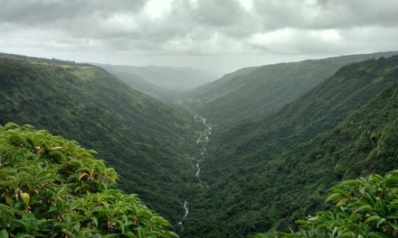 Top 10 Best Hill Stations near Mumbai for a Weekend Getaway!