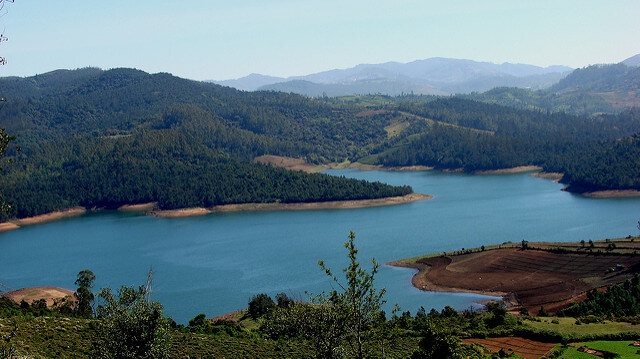 Emerald Lake in Ooty | Best Places to Visit in India in January